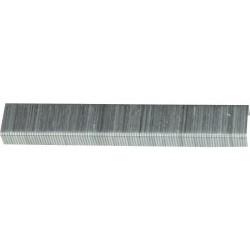 Capse pentru Lemn (1000 buc) Buildxell - Inaltime: 8mm Grosime: 1.2 mm