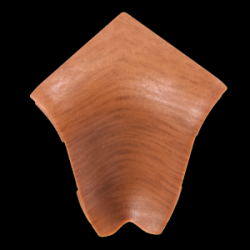 Colt Exterior Plinta Alun H1 44mm